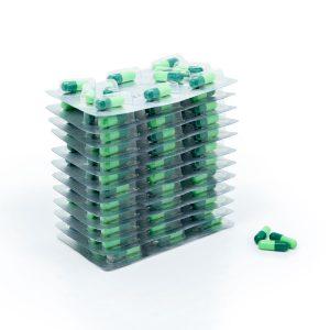 Ginkgo Biloba 40 mg (120 capsule)